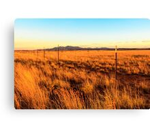 Barbed Wire Fence New Mexico Canvas Print