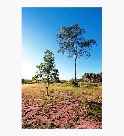 Hervey Bay, Queensland Photographic Print
