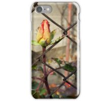 rosebud escaping iPhone Case/Skin