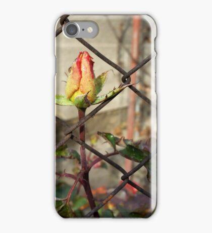 rosebud escaping iPhone Case/Skin