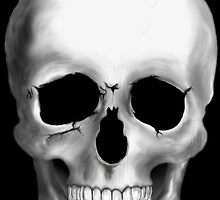 Skull Close-up by TinaGraphics