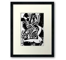 023 Framed Print