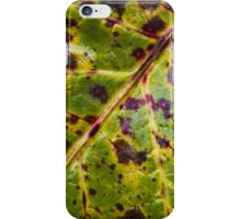 Fall Leaf iPhone Case/Skin