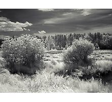 Ir river Photographic Print