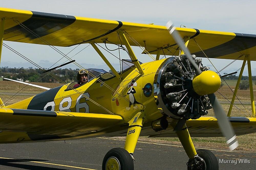Stearman Bi Plane by Murray Wills