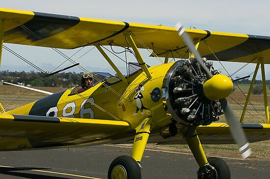 Stearman Bi Plane by Murray Wills