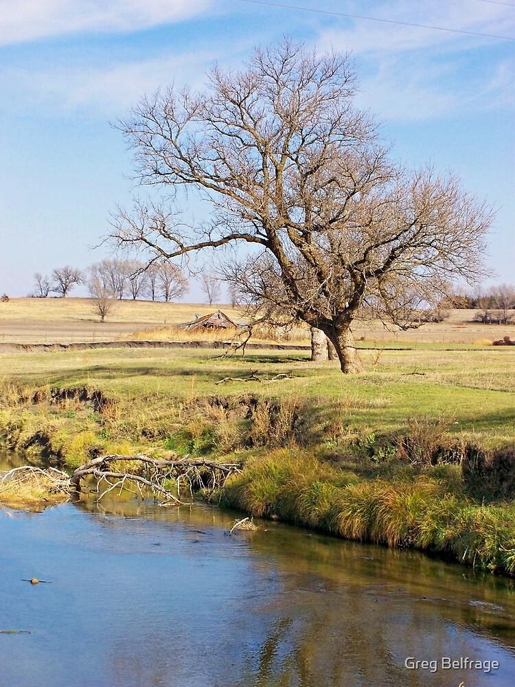 Forgotten Homestead by Greg Belfrage