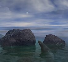 Rocky Cove by Christopher Lynch