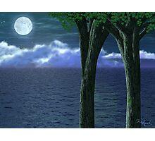 Nightscape Photographic Print