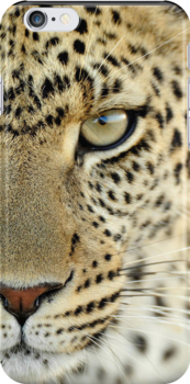 Leopard by TinaGraphics