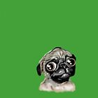 Brisket the Pug by heathercartyart