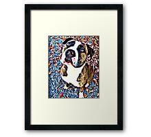 Pit Bull Rescue Beauty (2) Framed Print