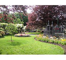 City Park, Launceston, Tasmania Photographic Print