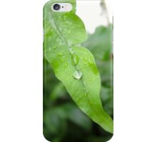 Leaf With Water Droplets iPhone Case/Skin