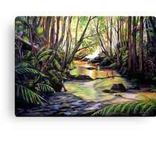 Blue Mountains Creek Canvas Print