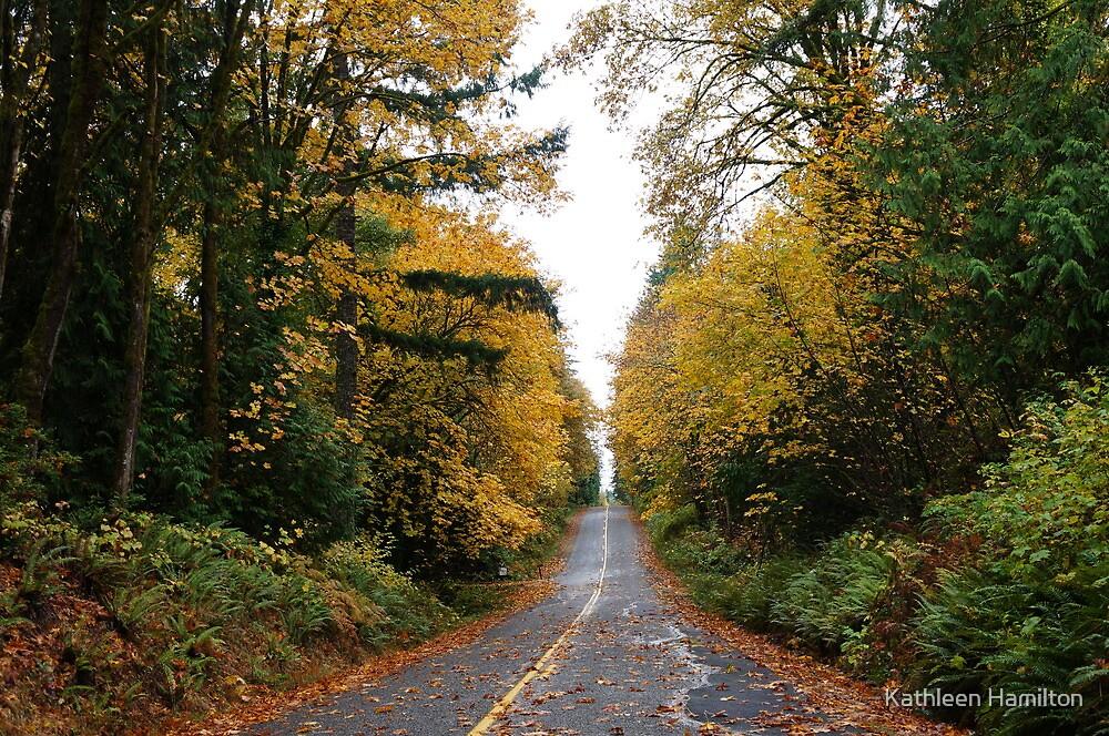 Far-Away Washington  by Rainydayphotos