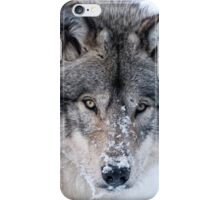 Christmas Card - Timber Wolf iPhone Case/Skin