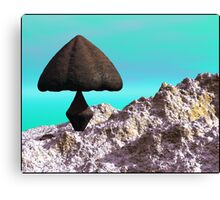 Liberty Cap Canvas Print