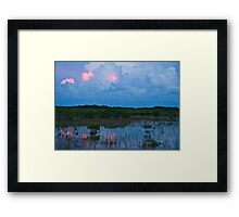 Swamp Reflect Framed Print