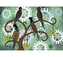 Four Colly Birds Photographic Print