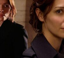 """Person of Interest """"Root & Shaw"""" (Photo) Sticker"""