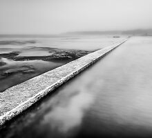 Merewether Wall by Michael Howard