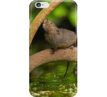 Inquisative baby Water vole iPhone Case/Skin