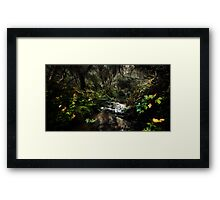 Fairy Dell Framed Print