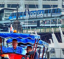 All Go In Darling Harbour by Eve Parry