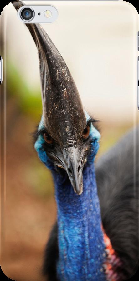 Cassowary iPhone Case by Peter Doré