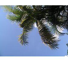 Sabah sky Photographic Print
