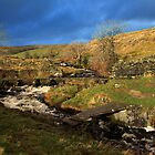 Clapper bridge above Wharf in the Yorkshire Dales by SteveFinch