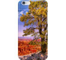 Ponderosa Pine iPhone Case/Skin
