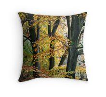 Autumn Beech Throw Pillow