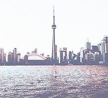 Red and Blue Toronto Symmetry by Fluxfox