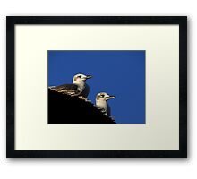 Birds' View Framed Print