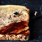 Marmite and toast by Bitesized