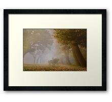 Autumn Carriage Framed Print