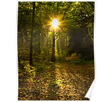 Autumn Sunburst Poster