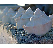 Sea Scape Photographic Print