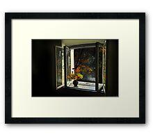 Park View Framed Print
