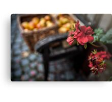 Autumn Apples and Blossoms Canvas Print