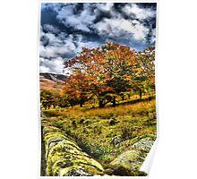 Autumn at Dovestones  Poster