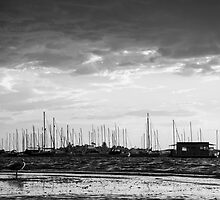 A Bird, A Houseboat, and some Yachts (B&W) - Belmont by Daniel Rankmore