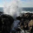 Spouting Rock - Kennebunkport, ME by MaryinMaine