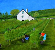 Grape harvest by maggie326