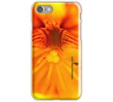 Centre of Nistertion iPhone Case/Skin
