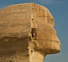 Sphinx Close Up by Sam Tabone