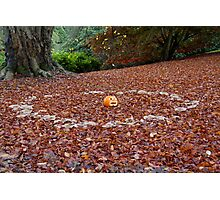 Pumpkin in Fairy Ring Photographic Print