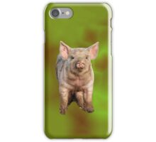 Inquisitive Piglet in field iPhone Case/Skin